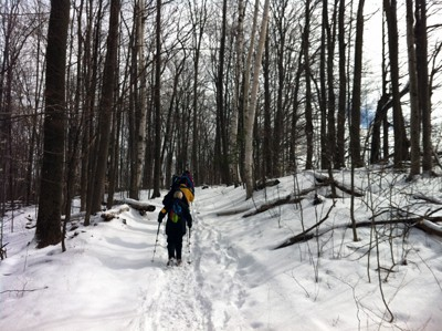 winter hike in the woods
