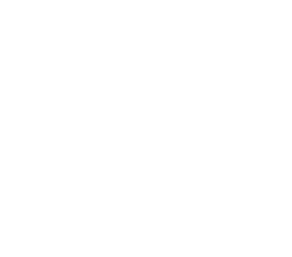 Jane Langille